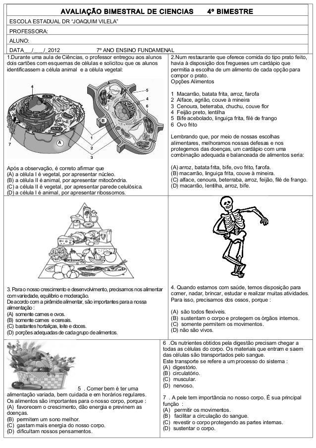 """AVALIAÇÃO BIMESTRAL DE CIENCIAS                                        4º BIMESTRE ESCOLA ESTADUAL DR """"JOAQUIM VILELA"""" PRO..."""