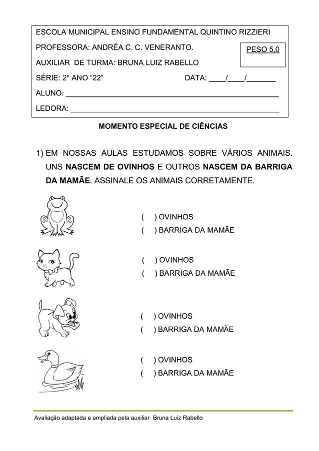 ESCOLA MUNICIPAL ENSINO FUNDAMENTAL QUINTINO RIZZIERI PROFESSORA: ANDRÉA C. C. VENERANTO.  PESO 5,0  AUXILIAR DE TURMA: BR...