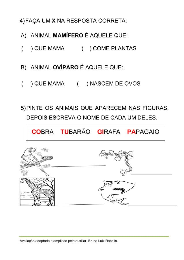 4) FAÇA UM X NA RESPOSTA CORRETA: A) ANIMAL MAMÍFERO É AQUELE QUE: (  ) QUE MAMA  (  ) COME PLANTAS  B) ANIMAL OVÍPARO É A...