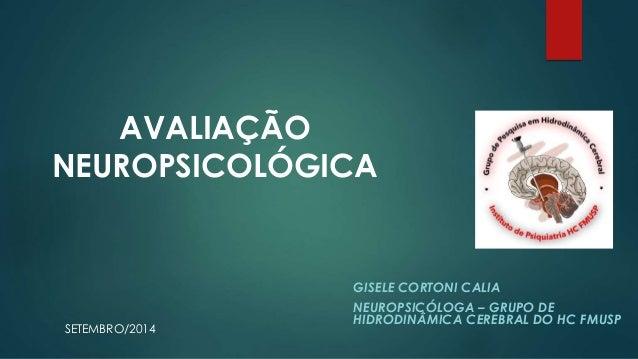 AVALIAÇÃO  NEUROPSICOLÓGICA  GISELE CORTONI CALIA  NEUROPSICÓLOGA – GRUPO DE  HIDRODINÂMICA CEREBRAL DO HC FMUSP  SETEMBRO...