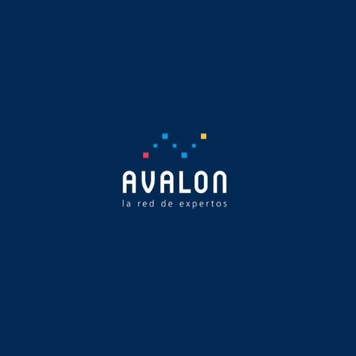 Avalon Red, la red de expertos. Conocimiento abierto.