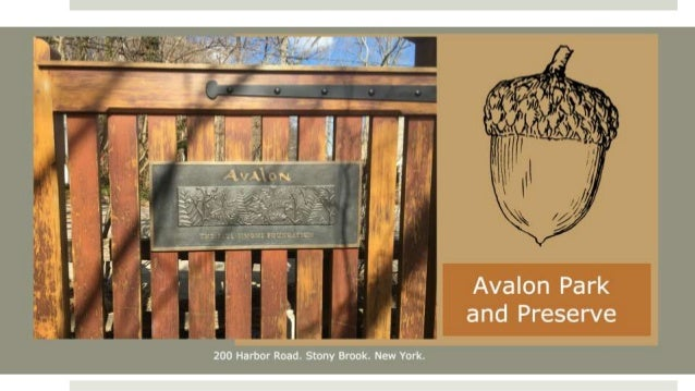 Avalon: Park and Preserve