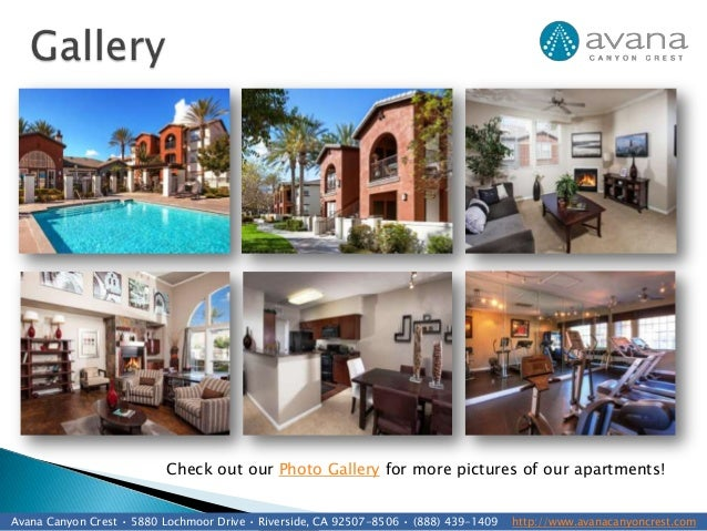 Apartments For Rent In Canyon Crest Riverside Ca Canyon Crest ...