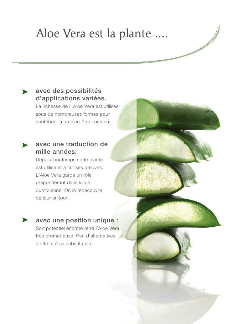 Alo vera brochure for Planter de l aloe vera dans son jardin