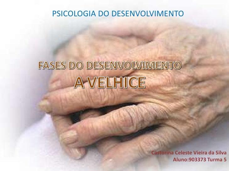 PSICOLOGIA DO DESENVOLVIMENTO<br />FASES DO DESENVOLVIMENTO<br />AVELHICE<br />Castorina Celeste Vieira da SilvaAluno:9033...