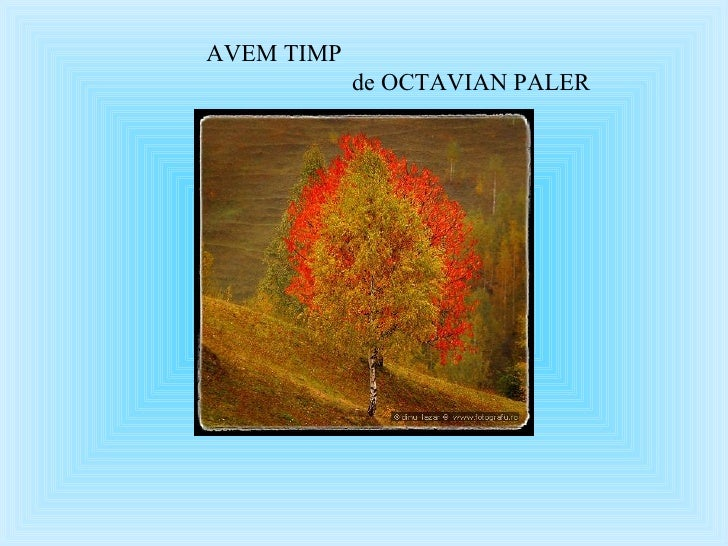AVEM TIMP  de OCTAVIAN PALER