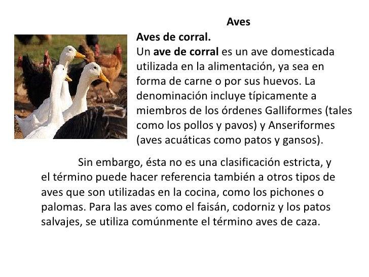 AvesAves de corral. Un ave de corral es un avedomesticada utilizada en la alimentación, ya sea en forma de carne o...