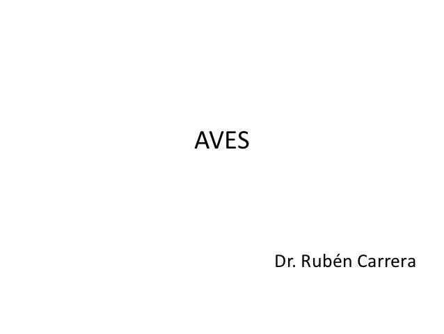 AVES       Dr. Rubén Carrera