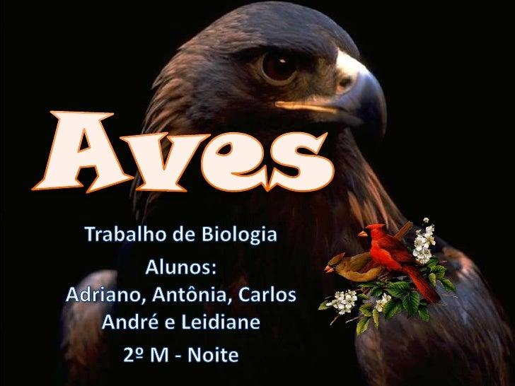 Aves<br />Trabalho de Biologia<br />Alunos: Adriano, Antônia, Carlos André e Leidiane<br />2º M - Noite<br />