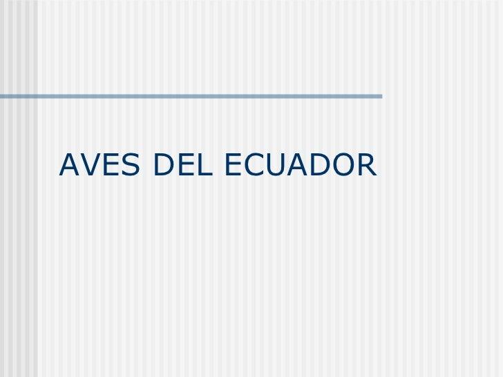 AVES DEL ECUADOR