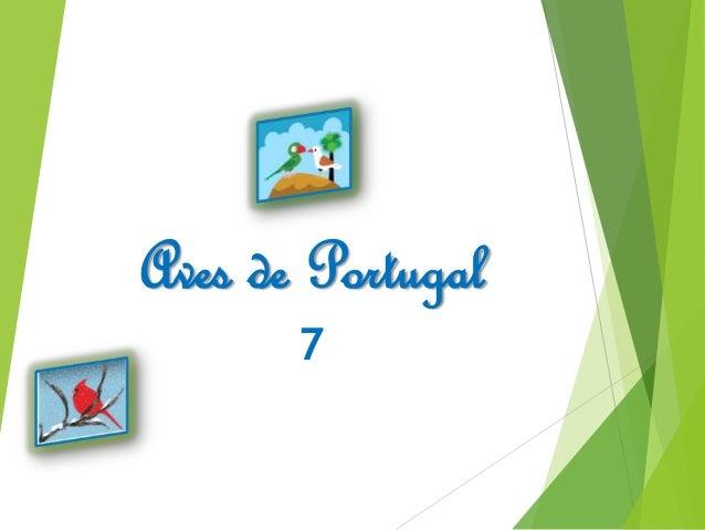 Aves de Portugal 7