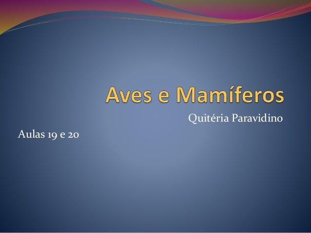 Quitéria Paravidino Aulas 19 e 20
