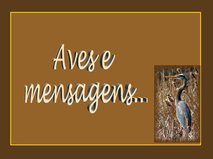 Aves e mensagens...
