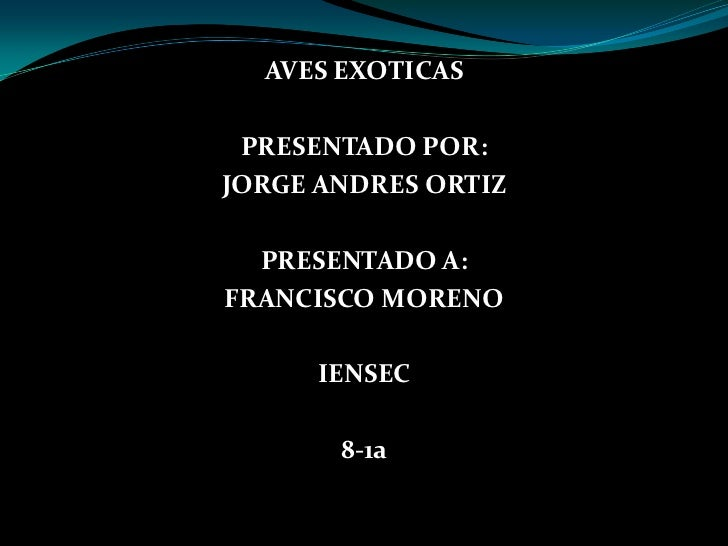 AVES EXOTICAS PRESENTADO POR:JORGE ANDRES ORTIZ  PRESENTADO A:FRANCISCO MORENO      IENSEC       8-1a