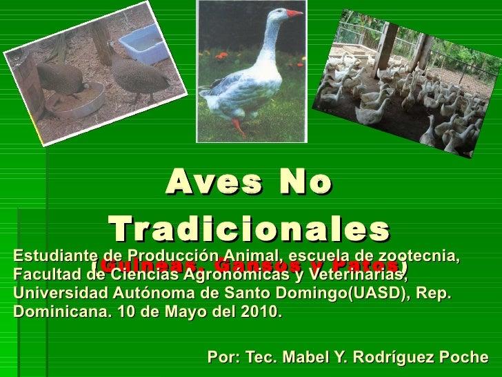 Aves No Tradicionales ( Guineas, Gansos y Patos ) Estudiante de Producción Animal, escuela de zootecnia, Facultad de Cienc...