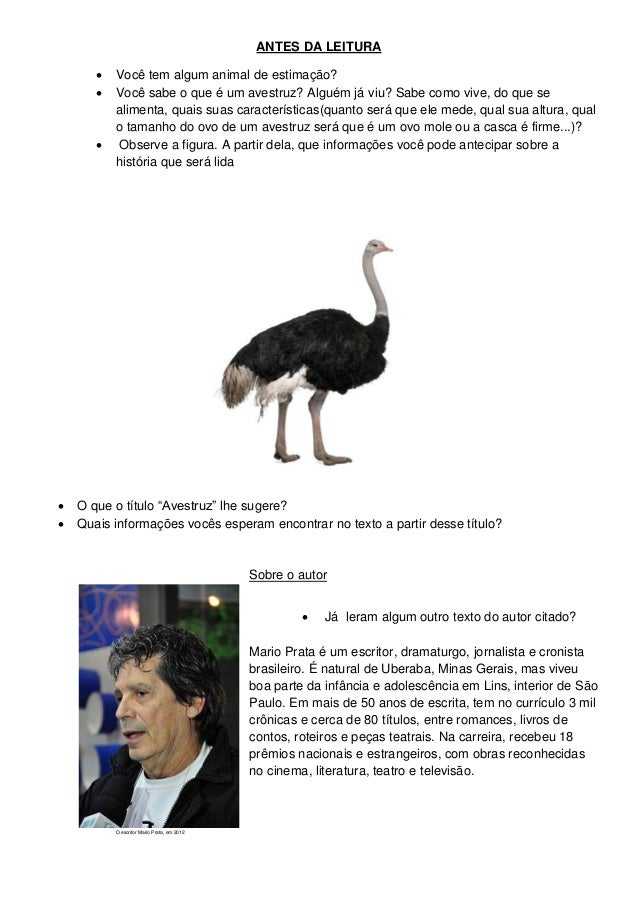 ANTES DA LEITURA Você tem algum animal de estimação? Você sabe o que é um avestruz? Alguém já viu? Sabe como vive, do qu...