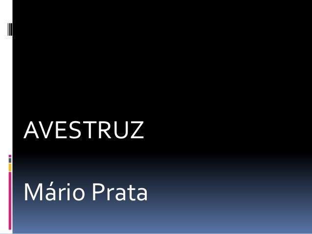 AVESTRUZMário Prata