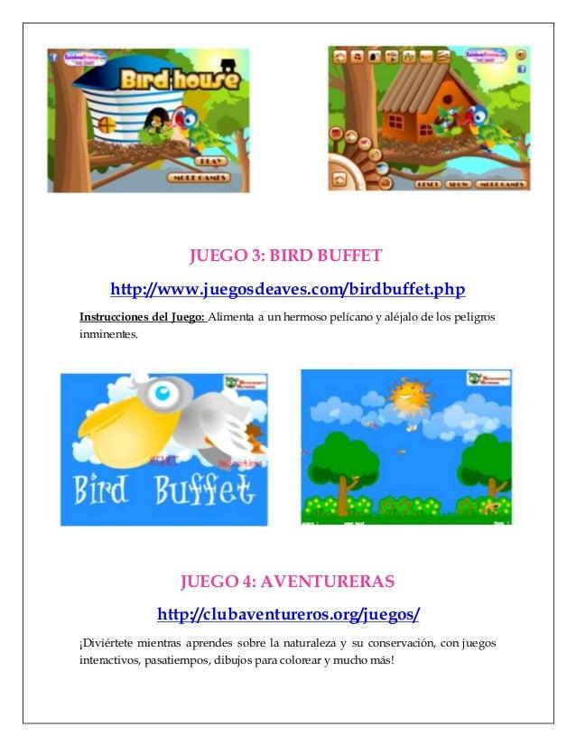 Aves Y Flora Juegos Y Canciones Para Preescolar