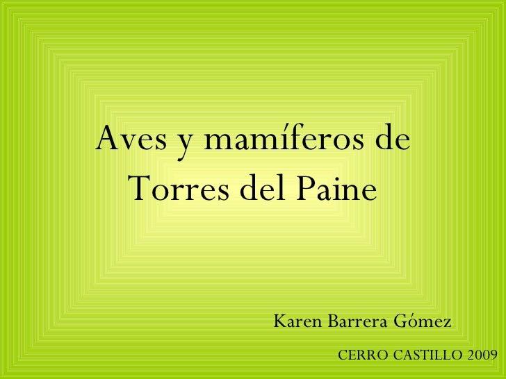Aves y mamíferos de Torres del Paine Karen Barrera Gómez CERRO CASTILLO 2009