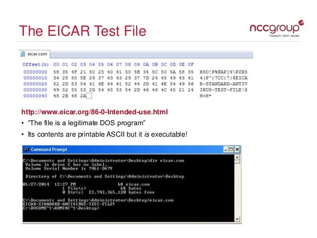 virus file test