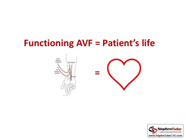 How to examine AVF in 10 minutes - Dr. Gawad Slide 3