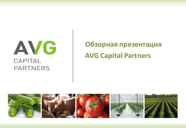 Обзорная презентация AVG Capital Partners