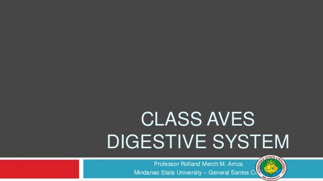 CLASS AVES DIGESTIVE SYSTEM Professor Rolland Merch M. Arriza Mindanao State University – General Santos City