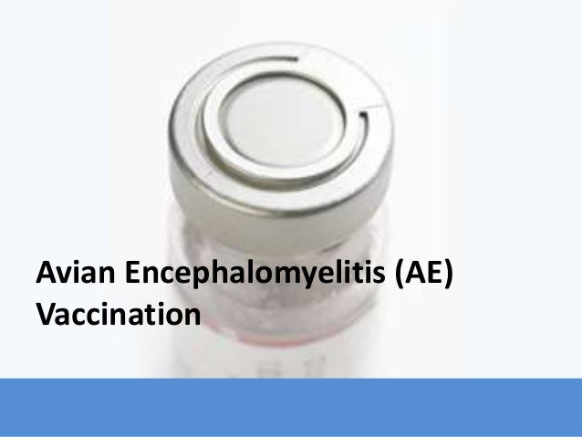 Avian Encephalomyelitis (AE) Vaccination