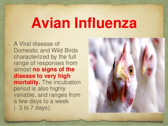 avian influenza Influenza, one of the most common infectious diseases, is a highly contagious airborne disease that occurs in seasonal epidemics and manifests as an acute febrile.