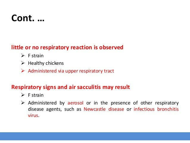 Cont. … little or no respiratory reaction is observed  F strain  Healthy chickens  Administered via upper respiratory t...