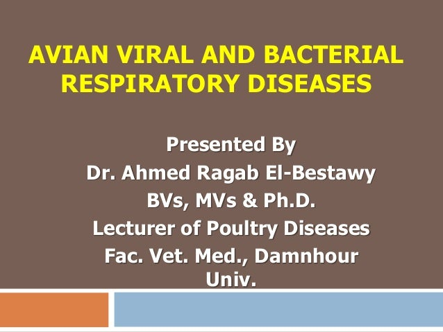 AVIAN VIRAL AND BACTERIAL RESPIRATORY DISEASES Presented By Dr. Ahmed Ragab El-Bestawy BVs, MVs & Ph.D. Lecturer of Poultr...