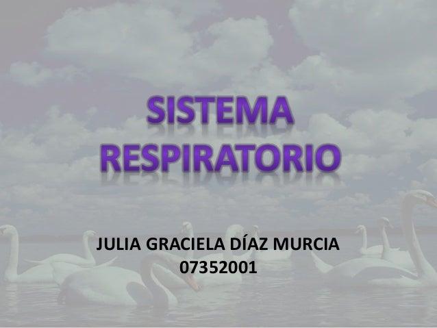 JULIA GRACIELA DÍAZ MURCIA 07352001