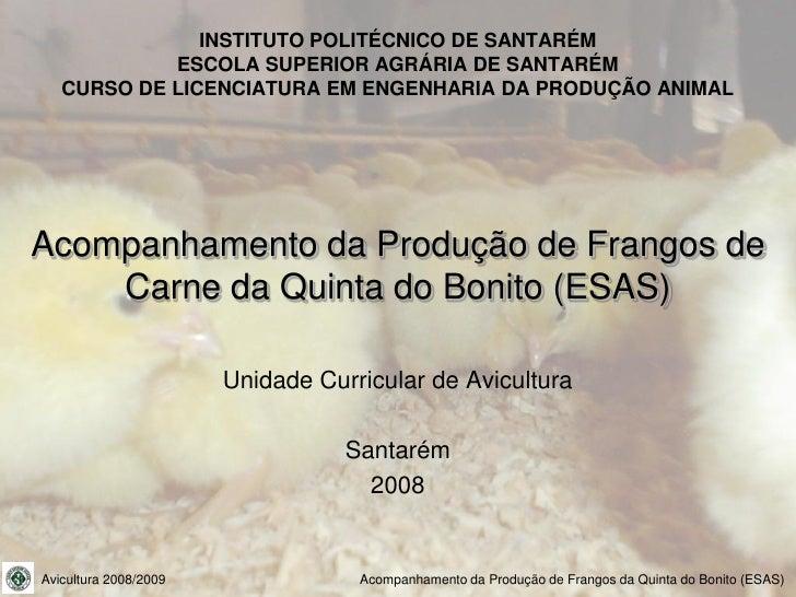 INSTITUTO POLITÉCNICO DE SANTARÉM             ESCOLA SUPERIOR AGRÁRIA DE SANTARÉM    CURSO DE LICENCIATURA EM ENGENHARIA D...