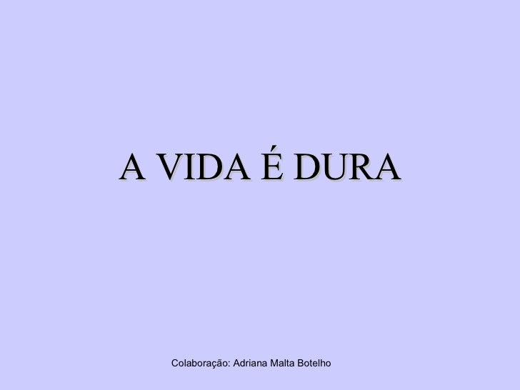 A VIDA É DURA Colaboração: Adriana Malta Botelho