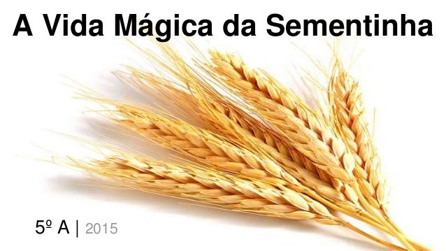 A Vida Mágica da Sementinha 5º A   2015