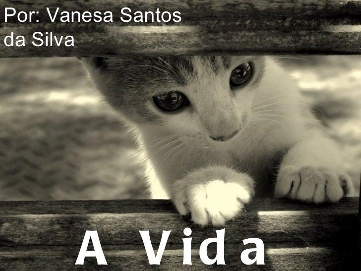 A Vida Secreta dos Gatos Por: Vanesa Santos da Silva