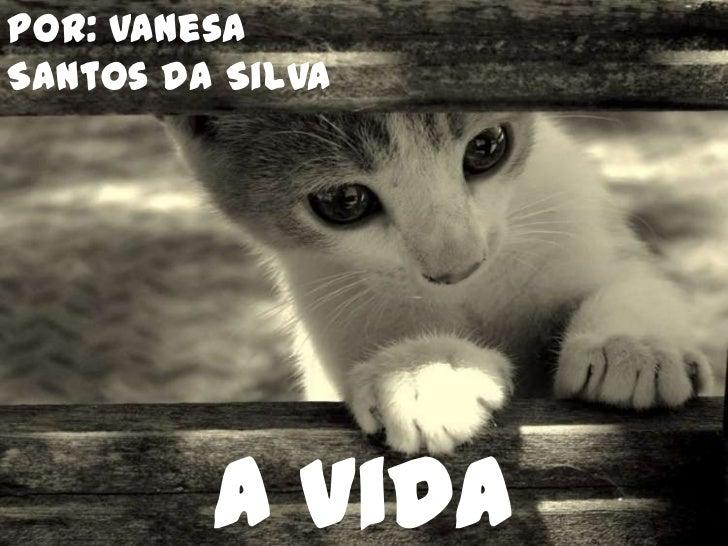 Por: Vanesa Santos da Silva<br />A Vida Secreta dos Gatos<br />