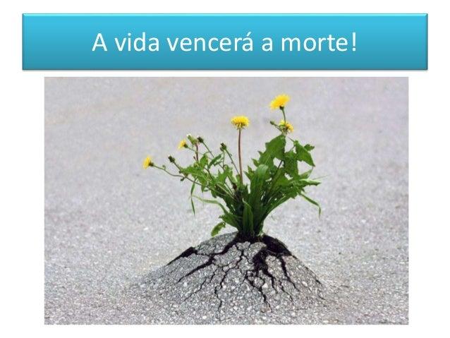 A vida vencerá a morte!