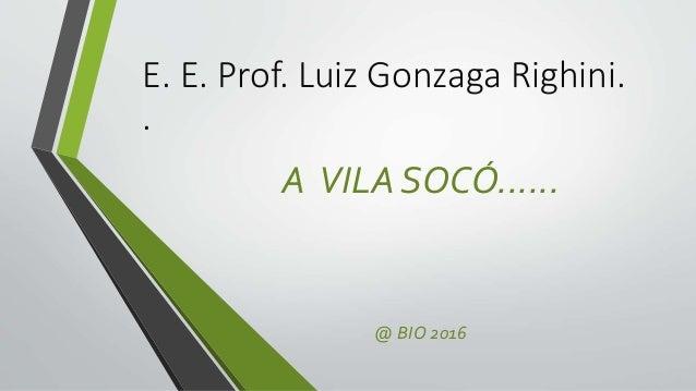E. E. Prof. Luiz Gonzaga Righini. . A VILA SOCÓ...... @ BIO 2016