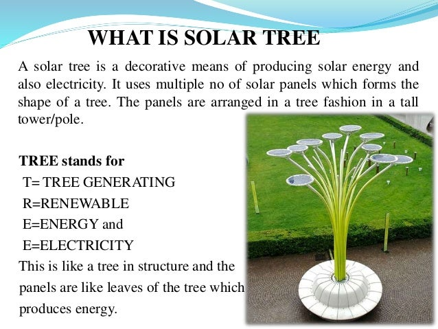 Solar tree 10 638gcb1478370523 10 what is solar tree sciox Image collections