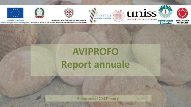 Primo anno (1°-12° mese) AVIPROFO Report annuale
