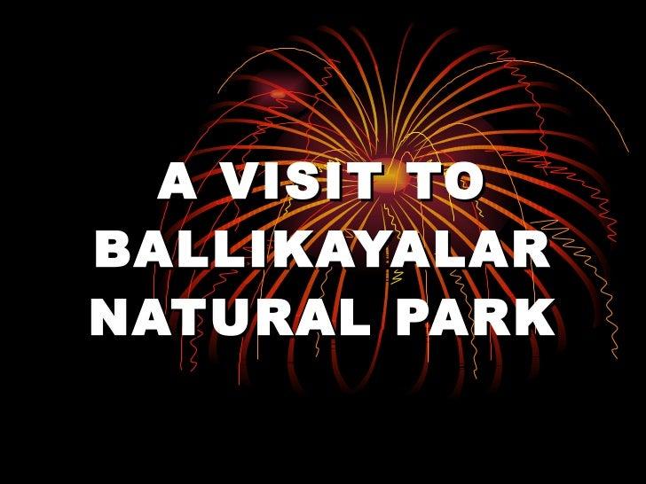 A VISIT TO BALLIKAYALAR NATURAL PARK