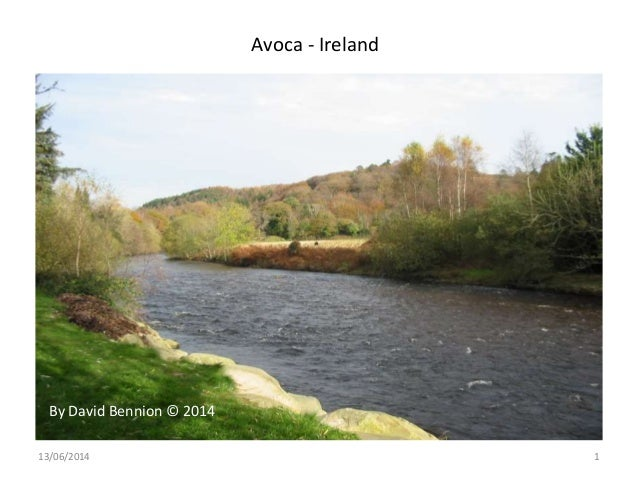 Avoca - Ireland 13/06/2014 1 By David Bennion © 2014
