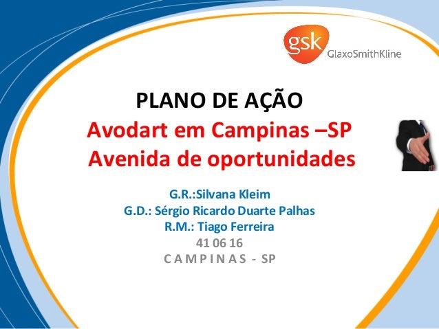 PLANO DE AÇÃOAvodart em Campinas –SPAvenida de oportunidades            G.R.:Silvana Kleim   G.D.: Sérgio Ricardo Duarte P...