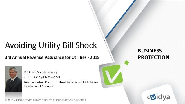 BUSINESS PROTECTION © 2015 – PROPRIETARY AND CONFIDENTIAL INFORMATION OF CVIDYA Avoiding Utility Bill Shock 3rd Annual Rev...