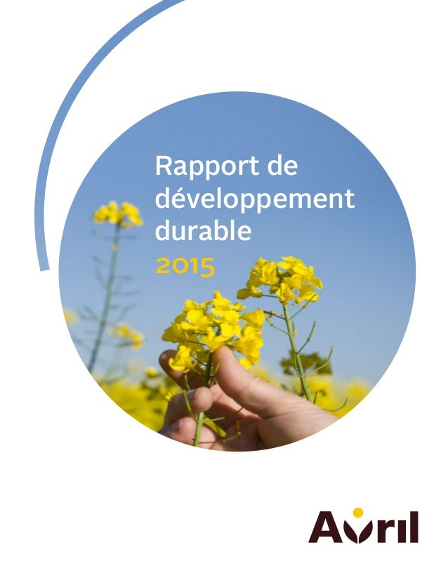 Rapport de développement durable 2015