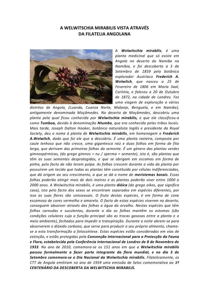 A WELWITSCHIA MIRABILIS VISTA ATRAVÉS<br />DA FILATELIA ANGOLANA<br />571549530A Welwitschia mirabilis, é uma planta medic...
