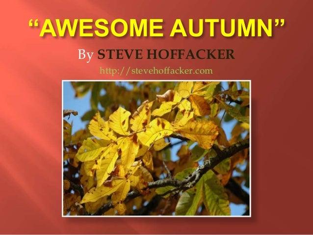 """""""AWESOME AUTUMN"""" By STEVE HOFFACKER http://stevehoffacker.com"""