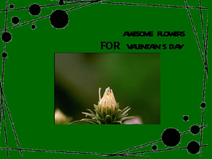 AWESOME  FLOWERS FOR  VALENTAIN`S  DAY