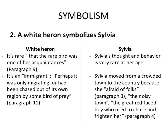 a white heron essay questions This teacher's guide contains a white heron analysis that includes a summery of a white heron and a look at white heron symbolism along with lesson ideas.